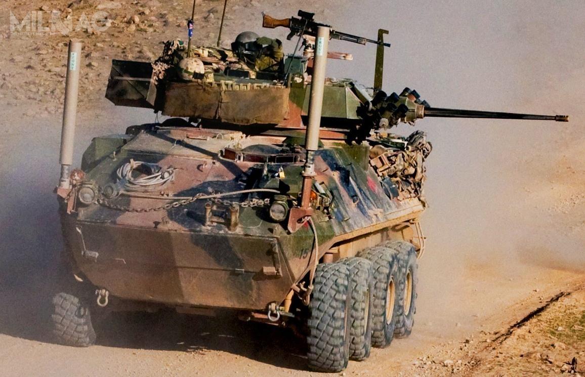 Boxer CRV wliczbie 225 egzemplarzy zastąpi 250 lekkich pojazdów opancerzonych ASLAV-25, które zostały użyte przezAustralian Army wAfganistanie  /Zdjęcie: US Army