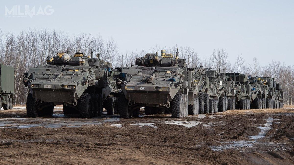 W 1999 pojazdy LAV III Kodiak weszły nauzbrojenie wojsk lądowych Kanady (651 egzemplarzy wwersji kbwp). 13 znich zostało zniszczonych wAfganistanie. Pojazdy bazują konstrukcyjnie namodelu GDELS Piranha III / Zdjęcie: 3rd Canadian Division, 3e Division du Canada